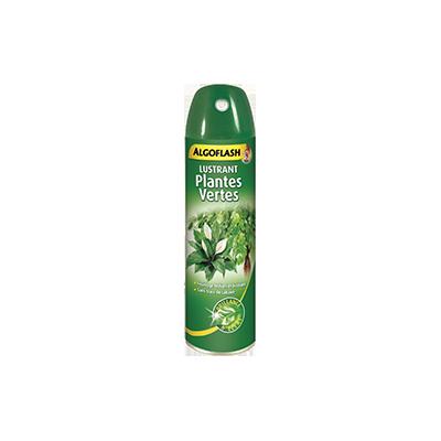 Lustrant Plantes Vertes ALGOFLASH