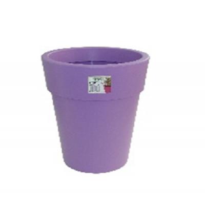 Linéa haut violet